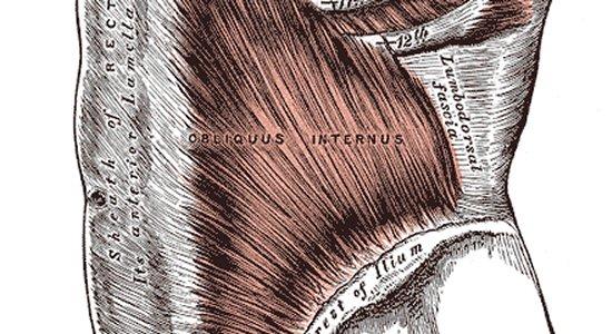 Körperteile